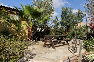 Kashimiri Apartments - Ein Blick in den tropischen Garten